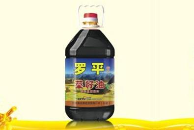 邵通菜香羅豐平 四級純正菜籽油